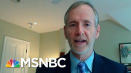 Dr. Inglesby: 'Need More Visibility' Into PPE Supply Chain   MTP Daily   MSNBC 8