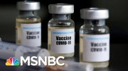 How Close Are Scientists To Having A Coronavirus Vaccine? | The 11th Hour | MSNBC 4