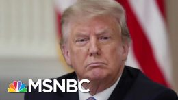 U.S. Hits 3,000,000 Confirmed COVID-19 Cases As Trump Applauds Response | The 11th Hour | MSNBC 9
