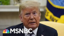 Trump's Niece Alleges He Uses 'Cheating As A Way Of Life' In New Book | The 11th Hour | MSNBC 8