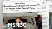 Tell-All Book Renews Attention On Trump Sister's Ethics Inquiry   Rachel Maddow   MSNBC 5