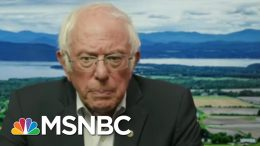 Joint Task Force Policies Will Make Biden 'Most Progressive President Since FDR' | All In | MSNBC 4