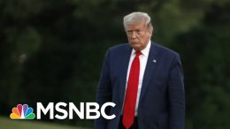 Ari Melber: Trump's Claim To Immunity On Taxes Rejected In 'Broad, Bipartisan Voice' | MSNBC 5