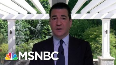 Dr. Scott Gottlieb: Coronavirus 'Doesn't Want To Be Controlled' | Stephanie Ruhle | MSNBC 6