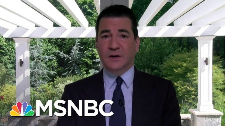 Dr. Scott Gottlieb: Coronavirus 'Doesn't Want To Be Controlled' | Stephanie Ruhle | MSNBC 1
