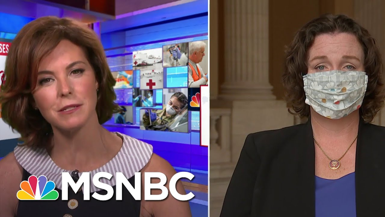 Rep. Katie Porter: If PPP Isn't Working, 'Allocate That $100B Elsewhere' | Stephanie Ruhle | MSNBC 1