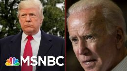 Trump Shows His Preoccupation With Defending His Own Mental Stability | Deadline | MSNBC 9