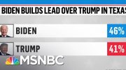 Biden Leads Trump In New Texas Poll | MSNBC 2