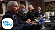 Dr. Anthony Fauci testifies before Congress on state of pandemic 3