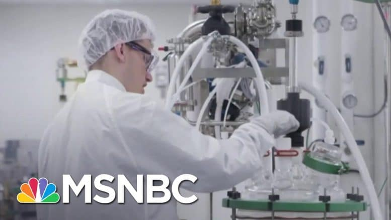 Potential COVID-19 Vaccine Shows Promise In Early Trial | The 11th Hour | MSNBC 1