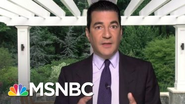 Dr. Scott Gottlieb: 'I'm Optimistic We're Going To Have A Vaccine' | Stephanie Ruhle | MSNBC 6
