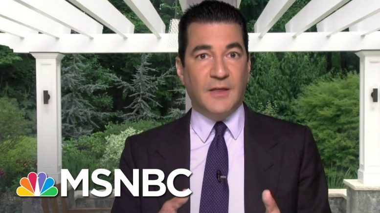 Dr. Scott Gottlieb: 'I'm Optimistic We're Going To Have A Vaccine' | Stephanie Ruhle | MSNBC 1