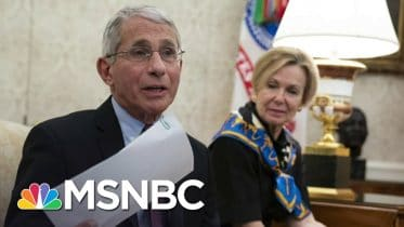 Dr. Fauci Calls Out White House Efforts To Undermine Him   Deadline   MSNBC 6