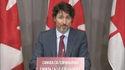 Trudeau won't say if he will waive cabinet privilege over WE Charity controversy 4