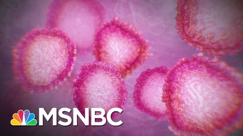 Doc: COVID-19 Mutations Could Slow A Path To A Vaccine | The 11th Hour | MSNBC 1