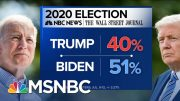 More Troubling Poll Results For President Trump - Day That Was | MSNBC 5