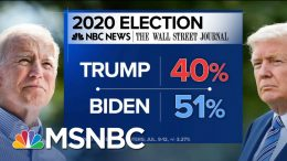 More Troubling Poll Results For President Trump - Day That Was | MSNBC 1