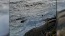 Large wave sweeps couple into the ocean during their wedding photoshoot 9