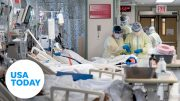 Are Florida's ICU beds approaching capacity? Doctors explain | USA TODAY 5