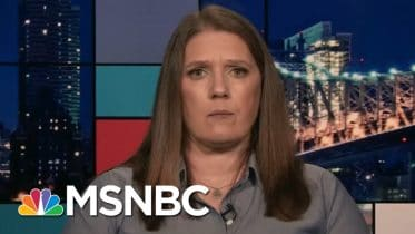 Mary Trump: Trump's Re-Election Would 'Be The End Of The American Experiment' - Day That Was | MSNBC 6