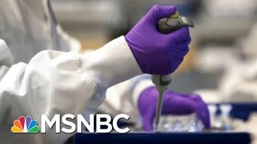Florida Reports 14,000 New COVID-19 Cases; One Third of Children Test Positive | Morning Joe | MSNBC 6