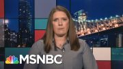 Mary Trump: Donald Trump 'Incapable Of Succeeding' On Coronavirus | Rachel Maddow | MSNBC 2