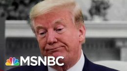Trump Calls Russia Bounty Intel A 'Hoax' As White House Passes The Buck | The 11th Hour | MSNBC 3