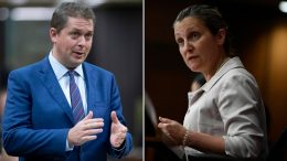 Scheer grills Freeland over WE Charity controversy and Trudeau's absence from question period 2