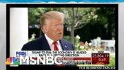 Trump Coronavirus Strategy: Wish It Just Disappears | Rachel Maddow | MSNBC 2