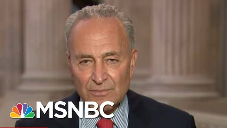 Schumer Discusses Letter Dems Sent To FBI Over 'Foreign Interference Campaign'   All In   MSNBC 1