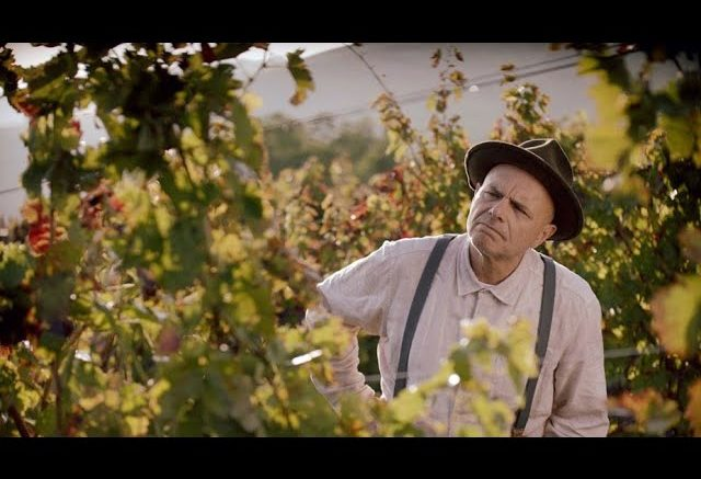 Movie reviews: 'From The Vine' formulaic, but a fun ride 1