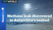 Scientists discover first active leak of seabed methane in Antarctica 5