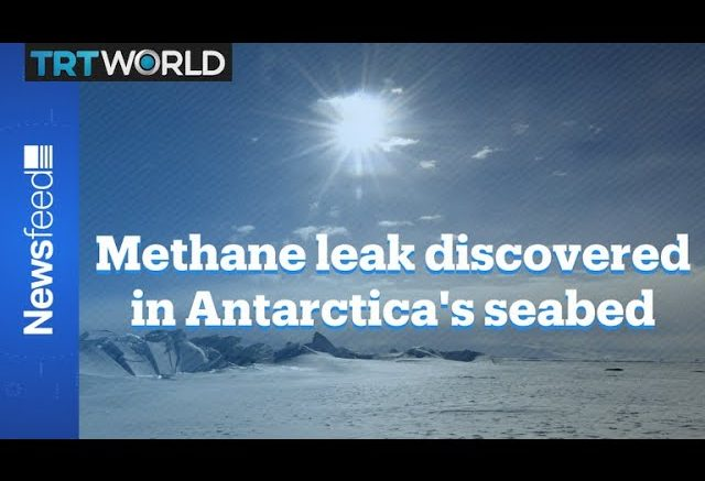 Scientists discover first active leak of seabed methane in Antarctica 1