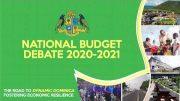National Budget Debate 2020-2021 2