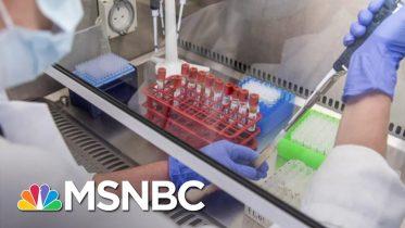 NIH Launching Trials To Test Antibody Drugs | Katy Tur | MSNBC 6