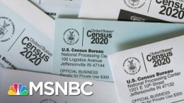 Voting Rights Expert Says Early End To Census Count Could Be 'Disastrous' | The Last Word | MSNBC 6