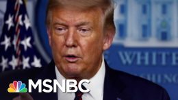 Paul Begala On Trump: You Can't Lead A Country You Don't Love | The 11th Hour | MSNBC 3