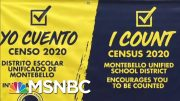 Ending The Census Early Could Have Huge Political Consequences - Day That Was | MSNBC 2