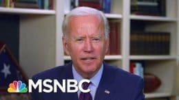Dem Strategist: Biden's 2020 Motto Should Change To 'What The Hell, Man?'   Craig Melvin   MSNBC 4