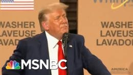 The Cult Of Trump Rides To The President's Defense On His Journey To Thighland | All In | MSNBC 6