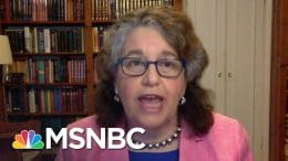 FEC Commissioner On Election Planning: 'Our Democracy Has To Survive This Crisis' | MSNBC 3