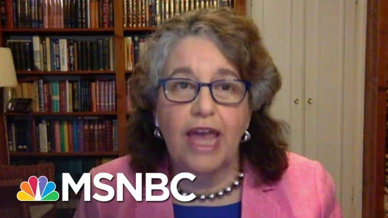 FEC Commissioner On Election Planning: 'Our Democracy Has To Survive This Crisis' | MSNBC 1