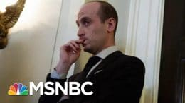 Stephen Miller A 'Case Study In Radicalization,' Says Writer | Morning Joe | MSNBC 4