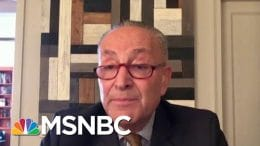 Sen. Schumer: Trump Has Wanted To Hurt Post Office For A Long Time | Morning Joe | MSNBC 2