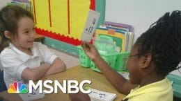 Elementary School Teacher Retires Over Virus Concerns | Craig Melvin | MSNBC 8