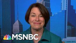 Sen. Klobuchar Slams Trump's Executive Actions As An Unconstitutional 'Gimmick' | MSNBC 1