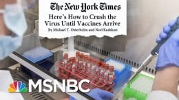 'We'll See A Tremendous Number Of Ill People' Without A New Lockdown | Andrea Mitchell | MSNBC 3