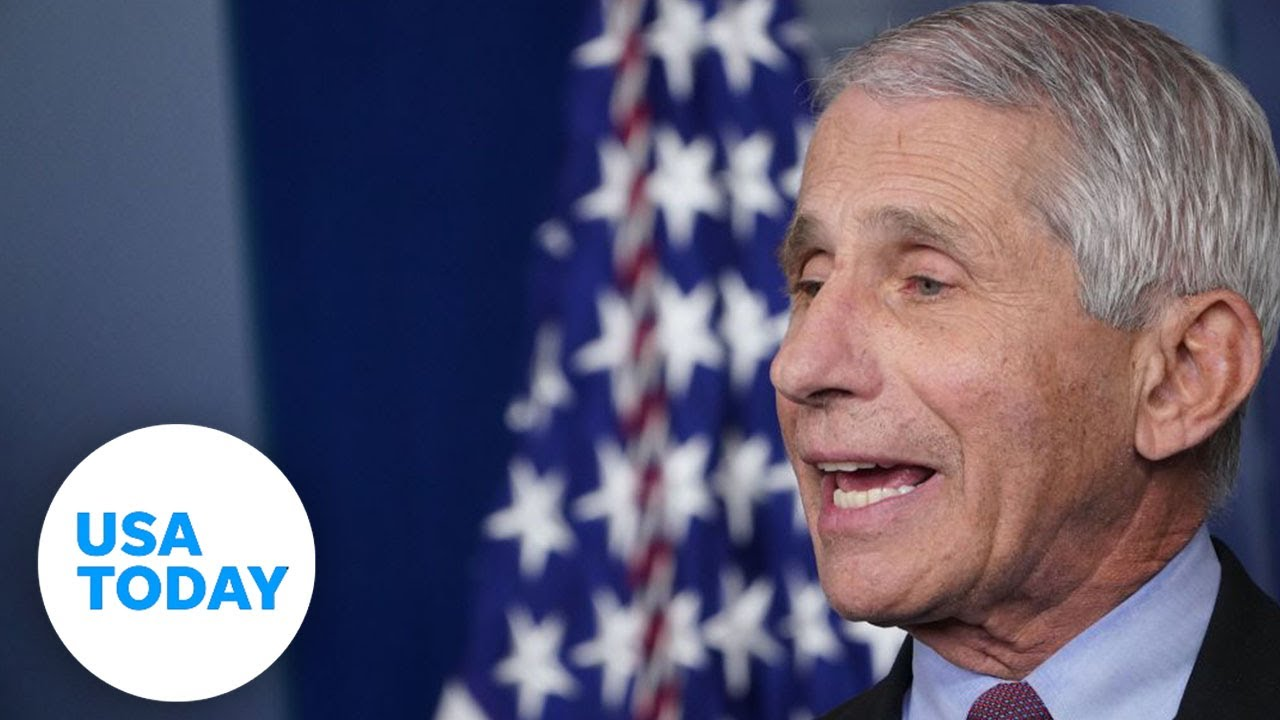 Dr. Anthony Fauci, Dr. Robert Redfield, others testify on COVID-19 strategy | USA TODAY 6
