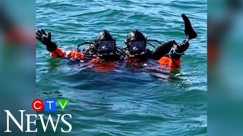 Divers find U.S. paralympian's prosthetic leg in the ocean 1