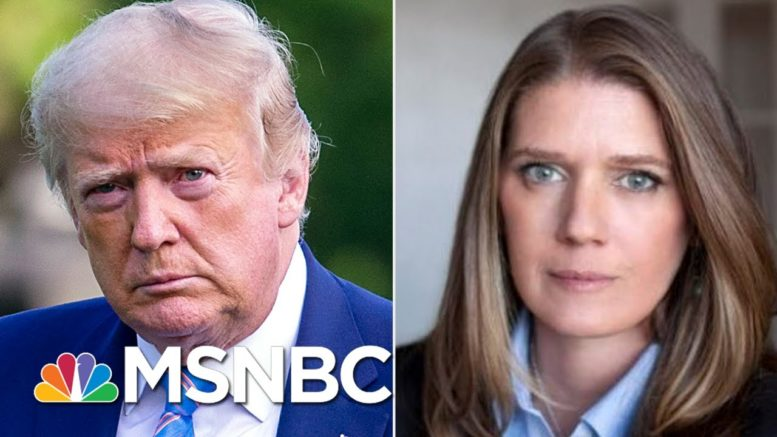 See Trump Niece's Chilling Warning About Why He Must Be Defeated In 2020 | MSNBC 1